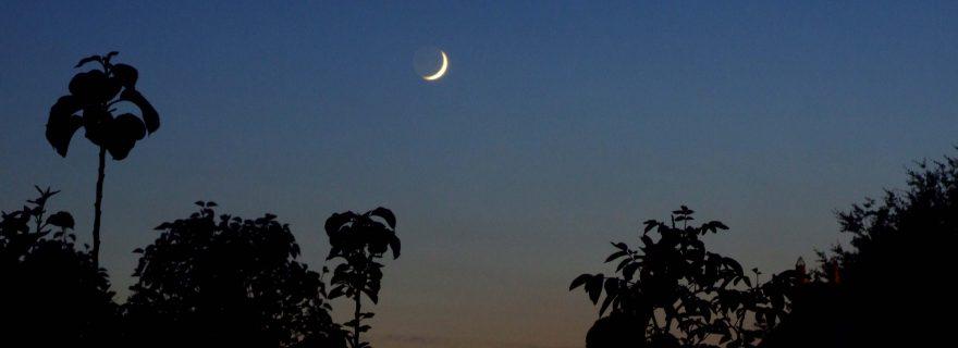 Tussen traditie en wetenschap: wanneer begint de Ramadan?